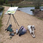 Painting with Aero in the New Forest