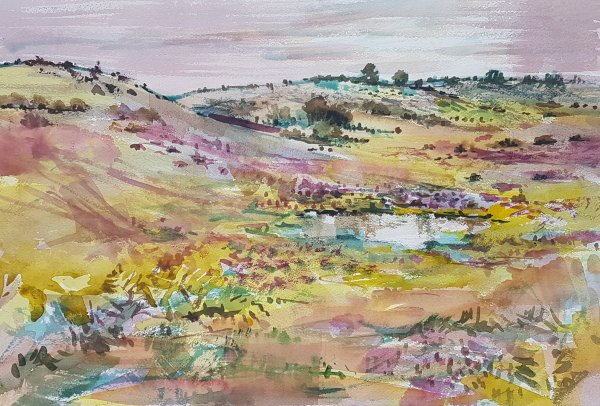 watercolour of New Forest heather