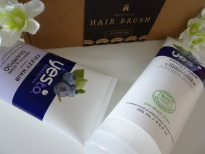 YES TO BLUEBERRIES SHAMPOO & CONDITIONER