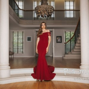 Pia Michi prom dress, style no. 1840