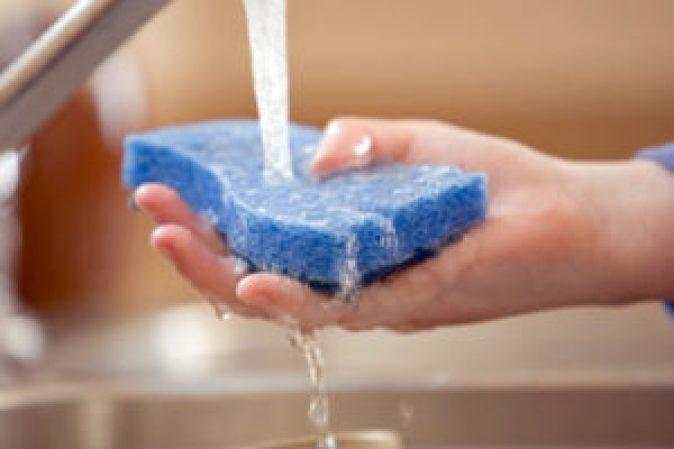 disinfect-sponge