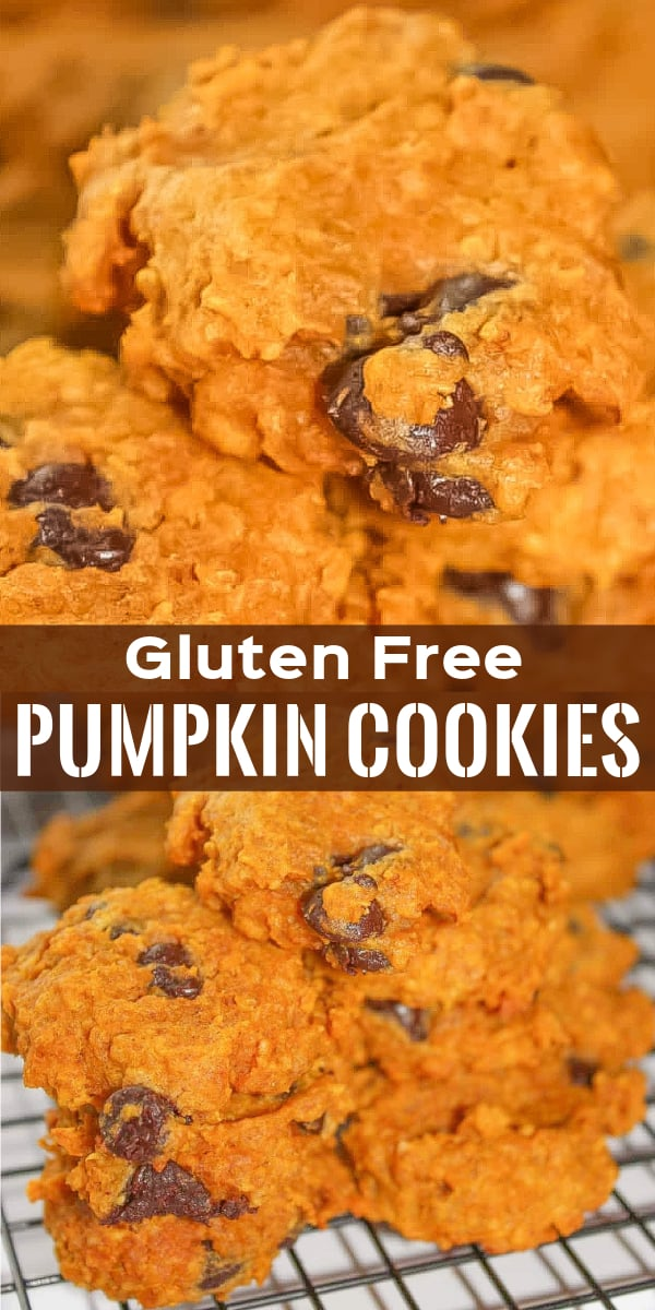 Gluten Free Pumpkin Cookies are a delicious fall dessert recipe made with pumpkin puree and quick oats and loaded with chocolate chips.