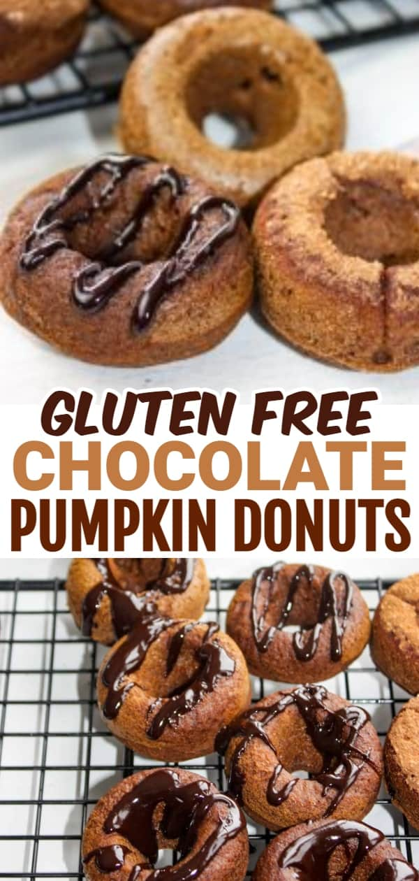 Chocolate Pumpkin Donuts are mini bites of gluten free deliciousness!  These little morsels can be eaten for breakfast, a snack or as a dessert.