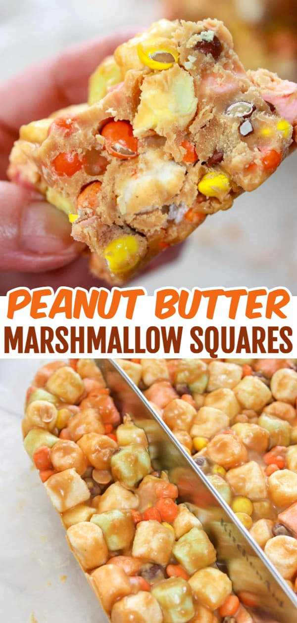 Peanut Butter Marshmallow Squares are a tasty, no bake dessert recipe that is a popular choice for all ages and occasions. This gluten free version of the traditional confetti squares is loaded with colourful marshmallows and mini Reese's Pieces.