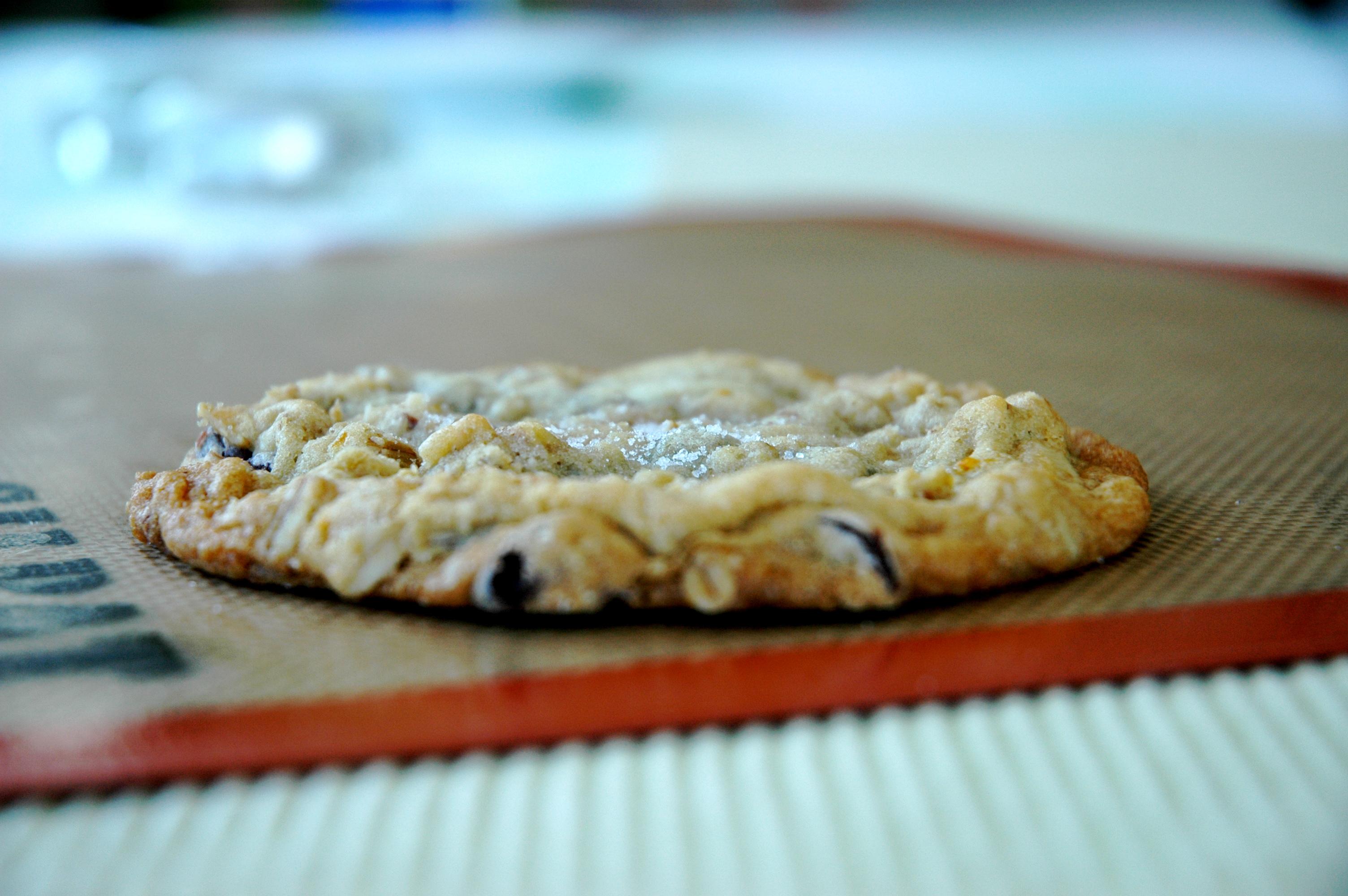 best-chocolate-chip-cookies