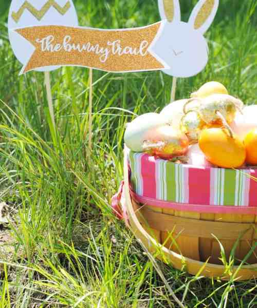 Hop Down the Bunny Trail this Easter with these Cute Signs that I Made with my Cricut