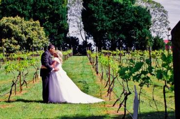 cedar-creek-winery-estate-wedding-kiss-the-groom-photography-55
