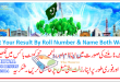 BISE Sahiwal Board Inter FA FSc Result 2014 11th 12th Class by Roll Number & Name