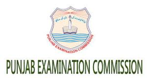 PEC Lahore Board 5th Class Result 2017 Kasur Sheikhupura Nankana Sahib Enter Your Roll Number or Name Get Your Result 2017