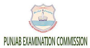 PEC Lahore Board 5th Class Result 2019 Kasur Sheikhupura Nankana Sahib Enter Your Roll Number or Name