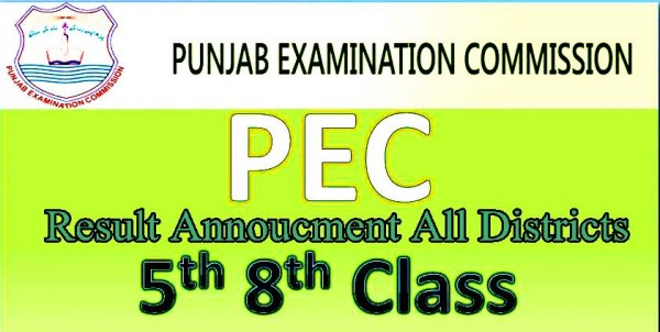 Punjab PEC 8th and 5th Class Board Result 2017 Date of Announcement For Districts