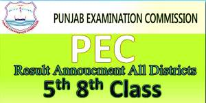 Punjab PEC 8th and 5th Class Board Result Date of Announcement For Districts