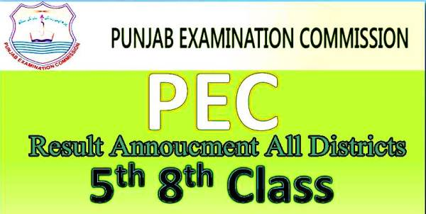 PEC Punjab 5th Class Result 2019 All Districts Enter Your Roll Number or Name