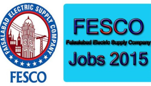 FESCO Wapda NTS Test Answer Key Result 2015 Merit List Final Selected Candidates