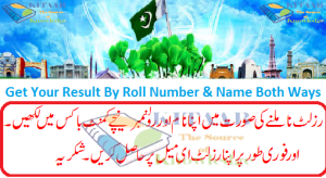 When the BISE Punjab Board 11th 12th Class Inter Result 2015 Will Announce This Year