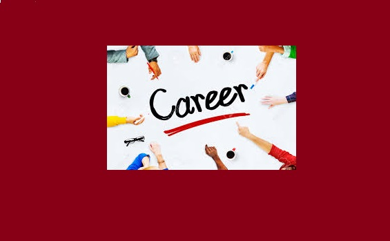 Career Options After I.Com or D.Com