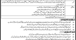 Pakistan Civil Aviation Authority CAA Jobs 2021 Online Apply Eligibility Criteria Last Date Procedure