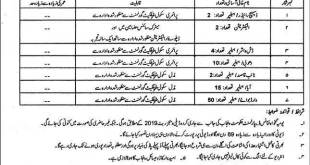 Institute Of Urology And Transplantation Rawalpindi Jobs 2021