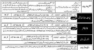 Pakistan Air Force PAF Civilian Staff Jobs 2021 Online Registration