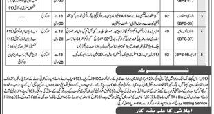 Wildlife Department Khyber Pakhtunkhwa HTS Jobs 2021 Online Application Form Eligibility Criteria