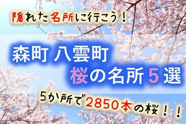 森町、八雲町の桜の名所5選