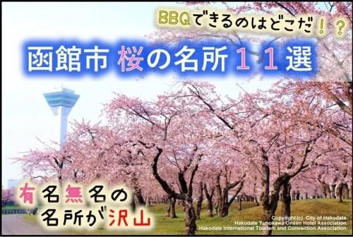 函館市 桜の名所