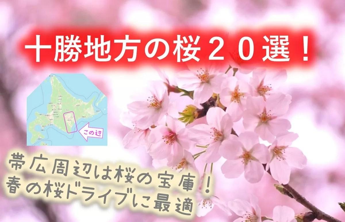 十勝地方の桜20選