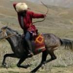 türk atı
