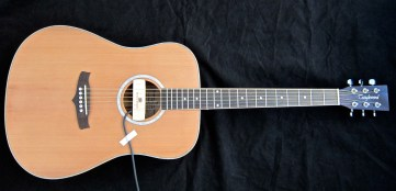 Tanglewood TW28-CLN + Woody – full front