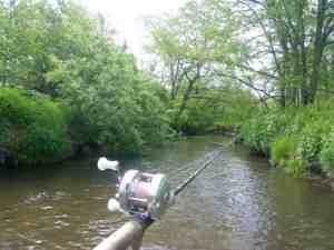 隣町湿原河川T