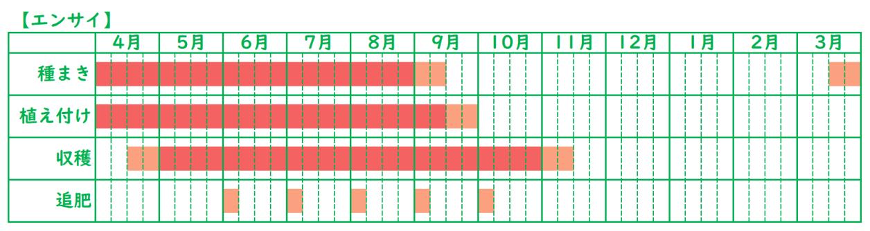 エンサイ_栽培スケジュール