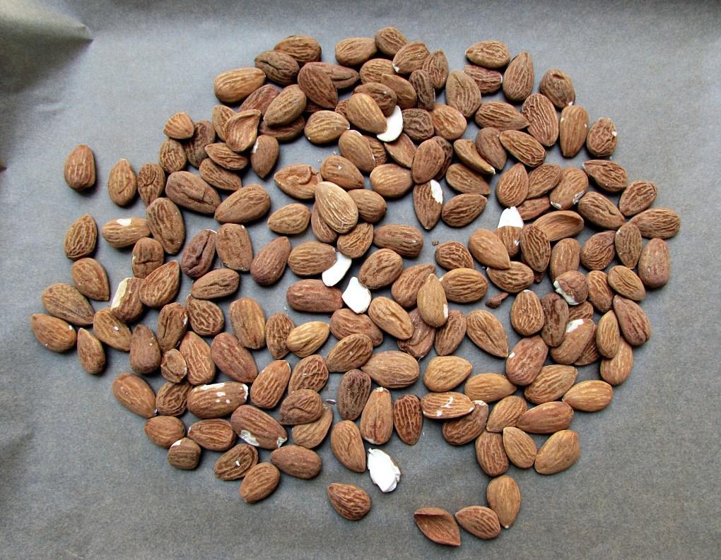 Kakaomandeln6