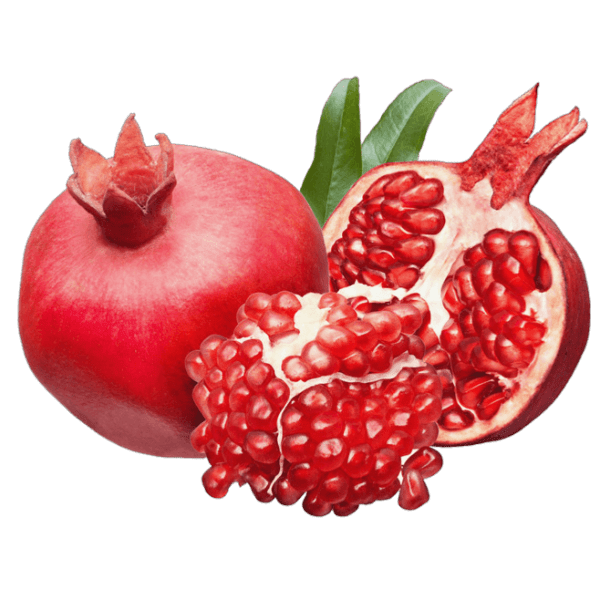 woolly_Pomegranate