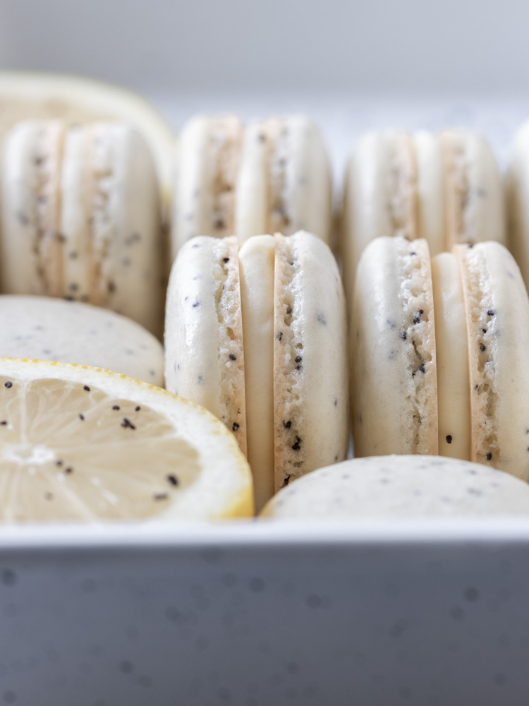 A close up of a lemon poppy seed macaron
