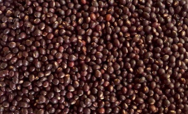 Pigeon-eyed peas / red pigeon peas / kali tori in Konkani, karutha thuvara in Malayalam