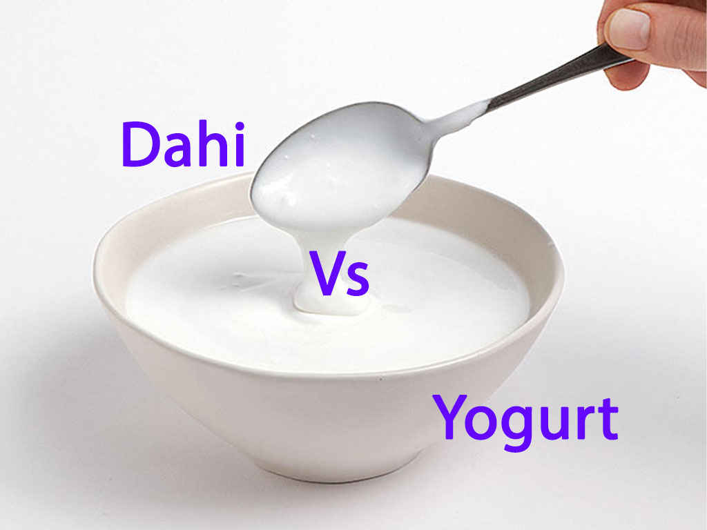 Difference between Curd and Yogurt
