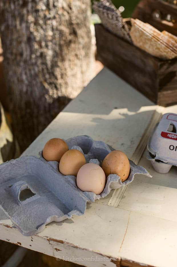 Diestel Turkey Ranch | Kitchen Confidante | Chicken Eggs