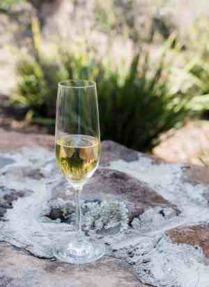 Wine glass outdoors in Sonoma wine country.