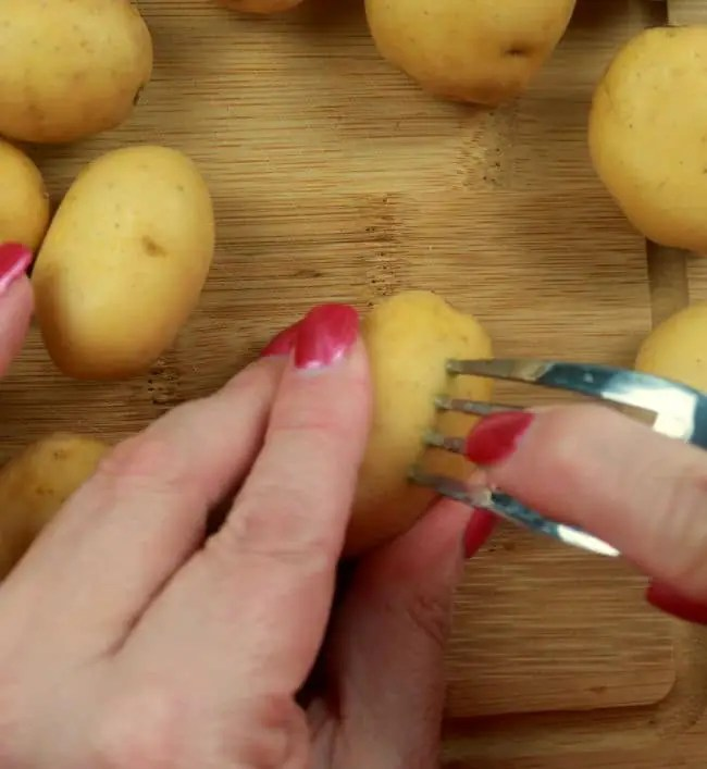 A photo of baby Dutch yellow potatoes being pierced with a fork.