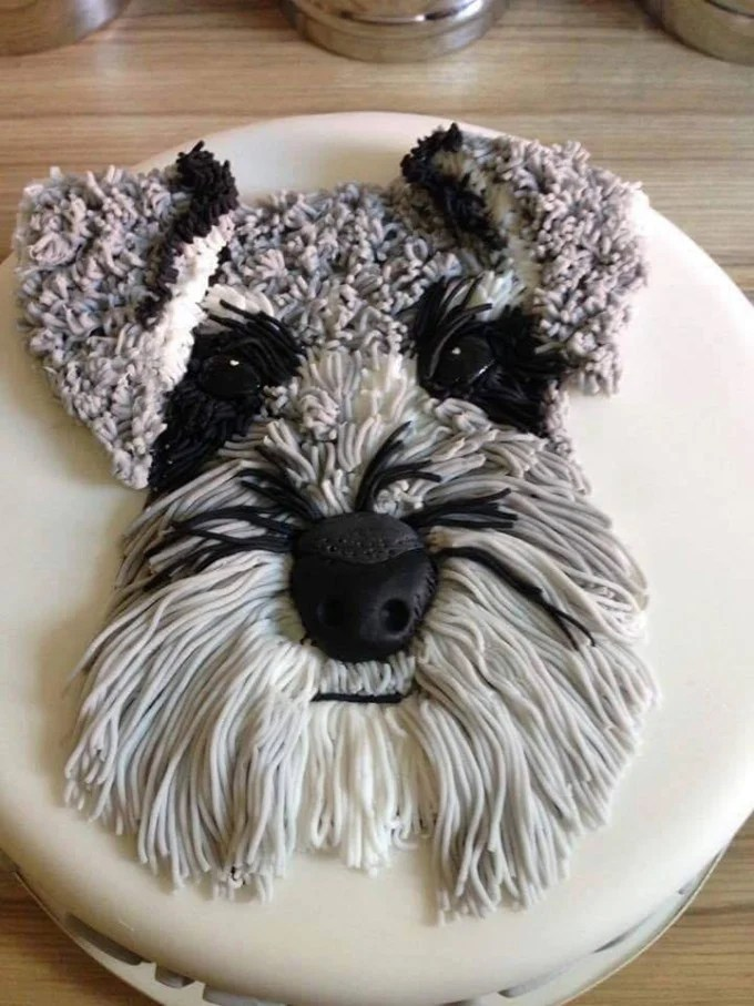 Schnauzer Cake...these are the BEST Cake Ideas!