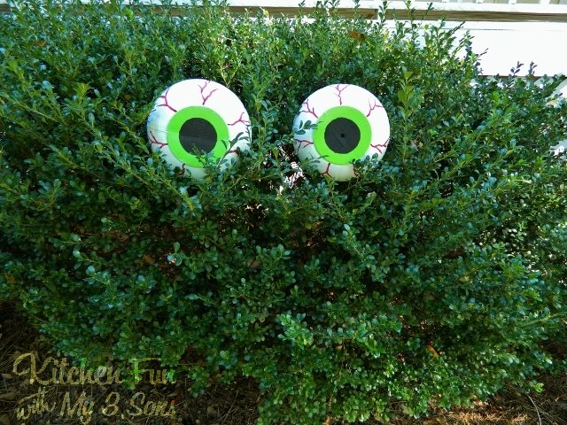 DIY Spooky Bush Eyes...these are the BEST Homemade Halloween Decorations & Craft Ideas!
