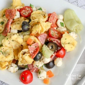 Tortellini Pasta Salad is the best side dish to take to your next BBQ! Full of fresh veggies and cheese, this recipe is one people will be asking for over and over.