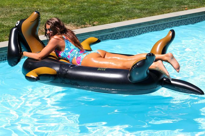 Weiner Dog Dachshund Pool Float