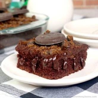 Thin Mint Poke Cake