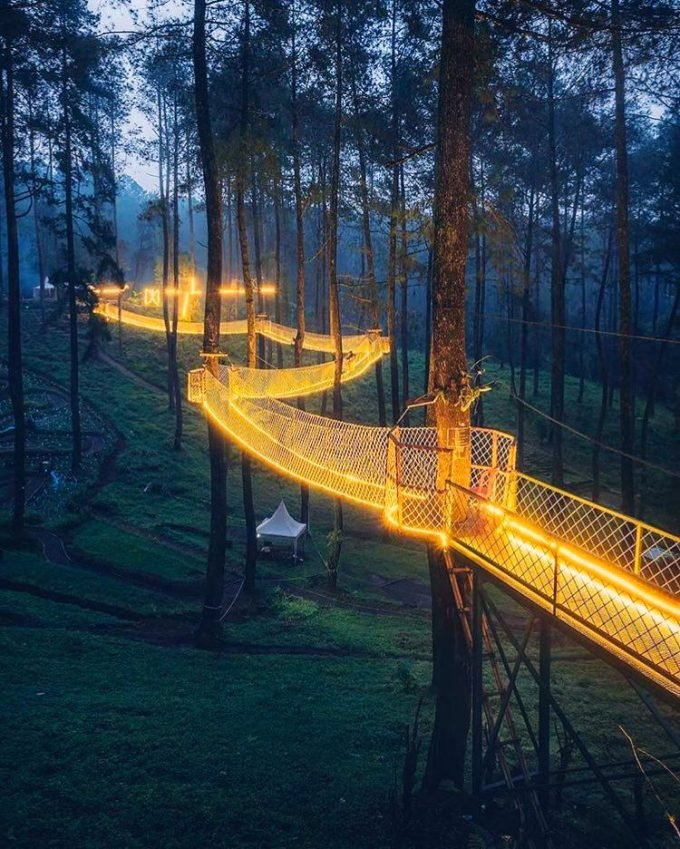 Tennessee's Treetop Skywalk