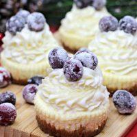 Sugared Cranberry Cheesecake Bites