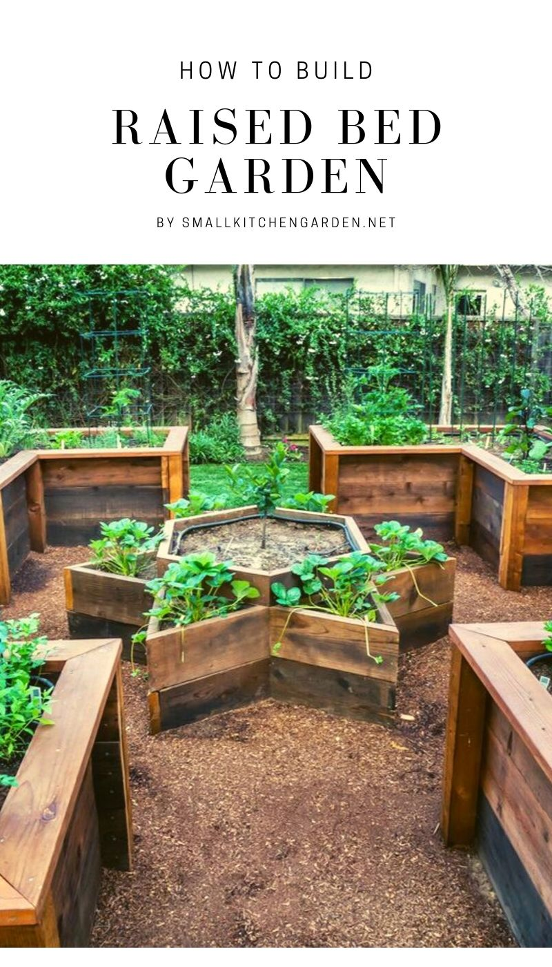 Raised Bed Garden Ideas (with easy tips and tricks)