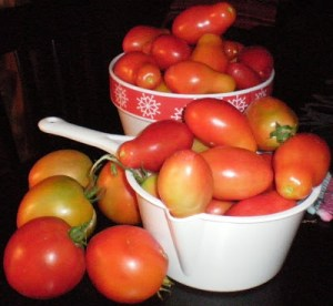 Slow Cooker Garden Stewed Tomatoes