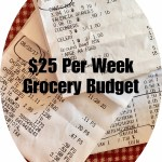 Grocery Budget $25 Week Two Challenge & Brown Rice Recipe