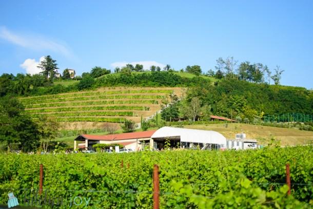 Bastianich Winery in Cividale del Friuli